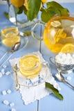 Hot tea with lemons Stock Photos
