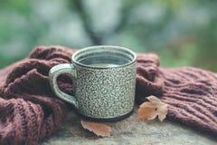 Hot tea in a mug on the table. Stock Photos