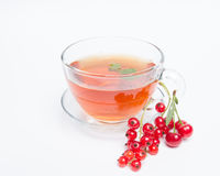 Hot tea with red currants Royalty Free Stock Photography