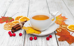 Hot tea with spices Royalty Free Stock Image