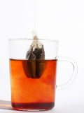 Hot tea by a thread Stock Images