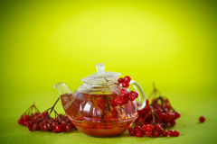 Hot tea viburnum in glass pot Stock Photography