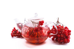 Hot tea viburnum in glass pot Stock Photo