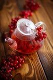 Hot tea viburnum in glass pot Royalty Free Stock Image