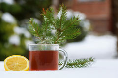 Hot tea in the winter Royalty Free Stock Image