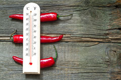 Hot temperature creative sign with thermometer and chilly Royalty Free Stock Image