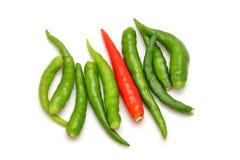 Hot thai chilli Stock Image