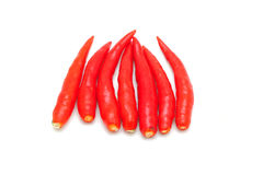 Hot thai chilli Royalty Free Stock Photo