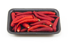 Hot thai chilli peppers on white background. Hot thai chilli peppers red on white background Royalty Free Stock Photography