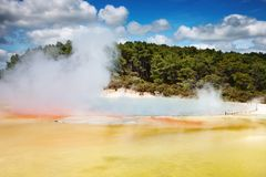 Hot thermal spring, New Zealand Royalty Free Stock Images