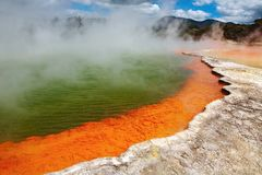 Hot thermal spring, New Zealand Stock Photo