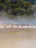 Hot thermal spring, New Zealand Stock Image