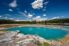 Hot thermal spring in Yellowstone. Hot thermal spring Black Opal Pool in Yellowstone National Park, Biscuit Basin area, Wyoming, USA Stock Image