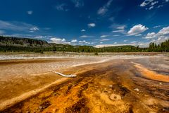 Hot thermal spring in Yellowstone. Hot thermal spring Black Opal Pool in Yellowstone National Park, Biscuit Basin area, Wyoming, USA Royalty Free Stock Photo