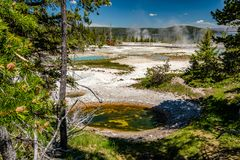 Hot thermal spring in Yellowstone. National Park, West Thumb Geyser Basin area, Wyoming, USA Royalty Free Stock Image