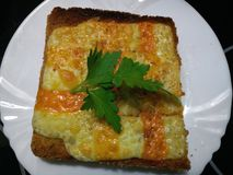 Fresh green parsley on melted red Leicester cheese. On hot toasted bread Stock Image