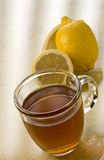 Hot Toddy Slingshot Stock Photography