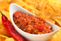 Hot Tomato Salsa with Nachos Stock Photos