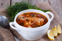 Hot tomato soup with chicken in a spoon Stock Photos