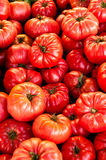 Hot Tomatoes Stock Photo