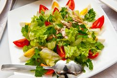 Hot vegetable salad with egg, tomato and meat stock images