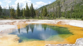Hot Volcanic Springs in Yellowstone Park Royalty Free Stock Photography