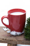 Hot warm milk. In a cup Royalty Free Stock Image