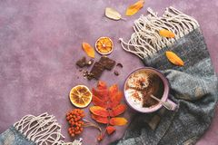 Hot warming drink with a scarf, autumn leaves and rowan on puruprny background. View from above. Hot chocolate or coffee. Hot warming drink with a scarf, autumn stock photo