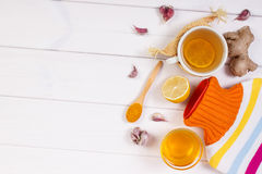 Hot water bottle, cup of tea and ingredients for preparation warming beverage, copy space for text Stock Image