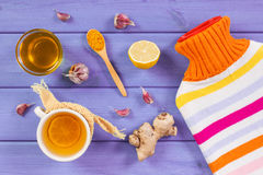 Hot water bottle, cup of tea and ingredients for preparation warming beverage Royalty Free Stock Photos