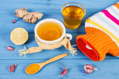 Hot water bottle, cup of tea and ingredients for preparation warming beverage Stock Image