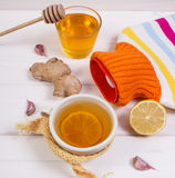 Hot water bottle, cup of tea and ingredients for preparation warming beverage Royalty Free Stock Images