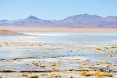 Hot water ponds and frozen lake on the Andes, Bolivia. Hot water ponds in geothermal region of the Andean Highlands in Bolivia. Frozen salt lake, distant Stock Image