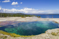 Hot water pool in Yellowstone. Scenic view of clear hot water pool in Yellowstone National park with lake in background, California, U.S.A Royalty Free Stock Photos