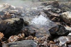 Hot water spring in Savusavu Fiji Stock Images