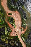 Hot water stream in volcanic area in New Zealand. Colors of minerals in hot water thermal area stock photo