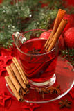 Hot winter tea Stock Images