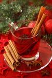 Hot winter tea Stock Images