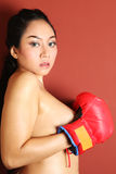 Hot woman with boxing gloves Royalty Free Stock Photo