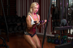Hot Woman Doing Exercise For Biceps Royalty Free Stock Images
