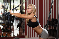 Hot Woman Doing Exercise For Triceps Royalty Free Stock Image