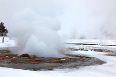 Hot Yellowstone geysers Royalty Free Stock Photo