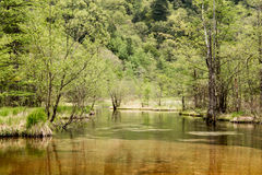 Hotaka mountain range and taisho ike pond in spring at kamikochi national park nagano Royalty Free Stock Photos
