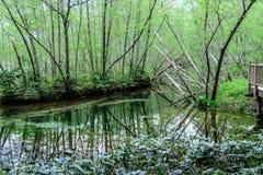 Hotaka mountain range and taisho ike pond in spring at kamikochi national park nagano Royalty Free Stock Photo