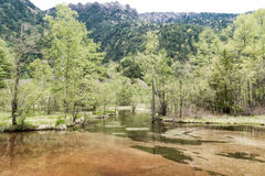 Hotaka mountain range and taisho ike pond in spring at kamikochi national park nagano. Japan Royalty Free Stock Photos