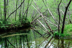 Hotaka mountain range and taisho ike pond in spring at kamikochi national park nagano Stock Photos