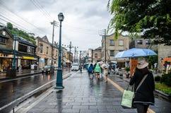 HOTARU, HOKKAIDO, JAPÓN -26 JULIO DE 2014: Porciones de peo no identificado Imágenes de archivo libres de regalías