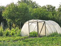Hotbed σε έναν φυτικό κήπο Στοκ φωτογραφία με δικαίωμα ελεύθερης χρήσης