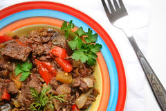Hotchpotch. Stew of meat and vegetables on colorful plate stock photos