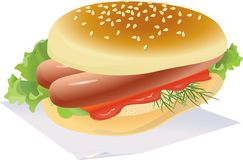 Hotdog. Appetizing Hotdog with sauce, on a napkin. vector. illustration Stock Photography